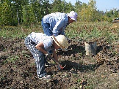 Битва за урожай- Фото 1
