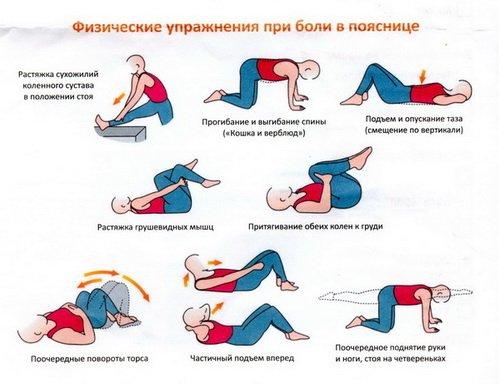 Гимнастика VS мазь: чем лечить спину?- Фото 1